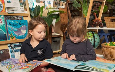 Promoting Literacy in Young Children